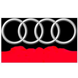 sss-partner-logos_audi